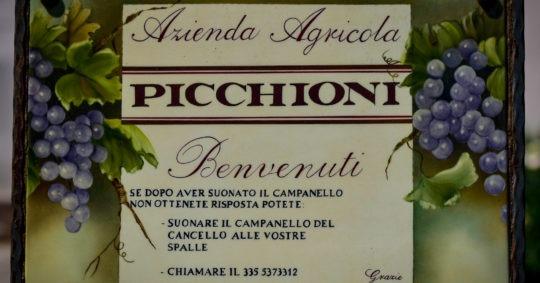 Azienda Agricola Picchioni Andrea