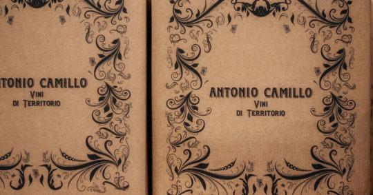 Antonio Camillo Vini di Territorio